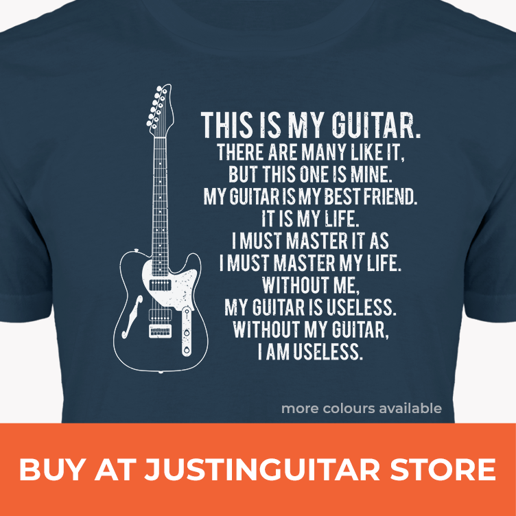 Whats The Best Guitar For A Beginner Justinguitar